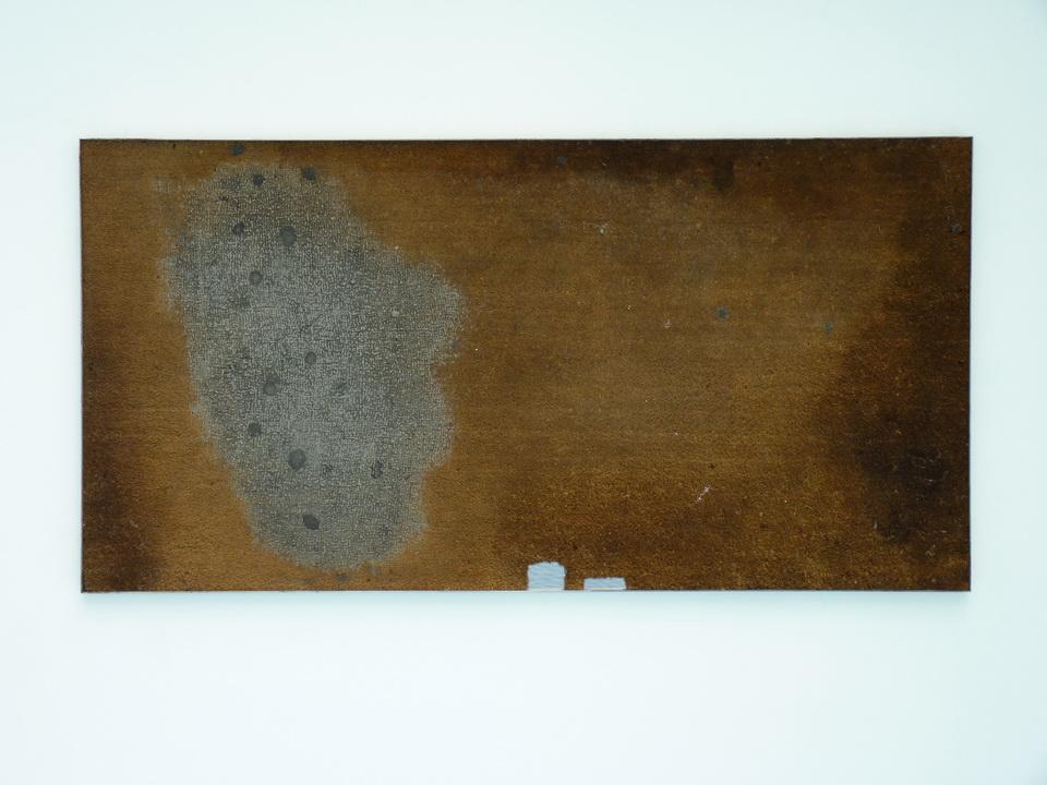 056  Eric Baudart  Vinci  2013  Paillaisson, silicone, acier, 100 x 196 cm
