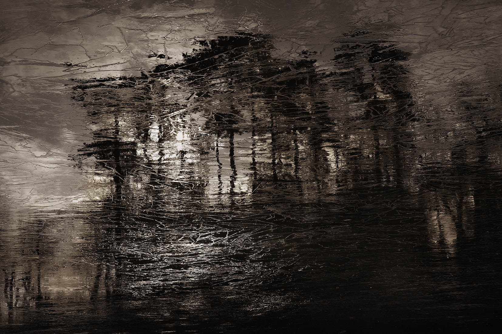 evikeller-towards-the-light_MG_4831