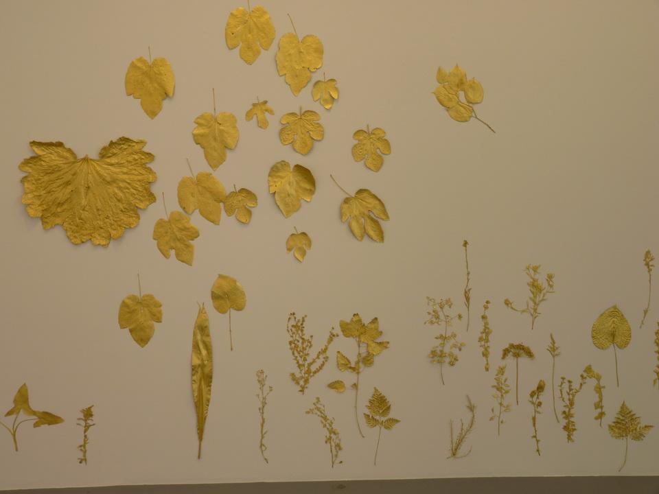 078 Lionel Esteve ne 1967sans titer serie de 58 oeuvres 2015 plantes dorees a la feuille d or