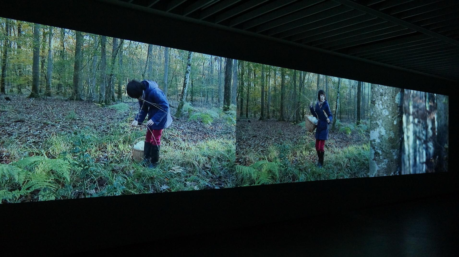 DSC02681 蕭美玲 森 2015 21 minis三頻錄影投影