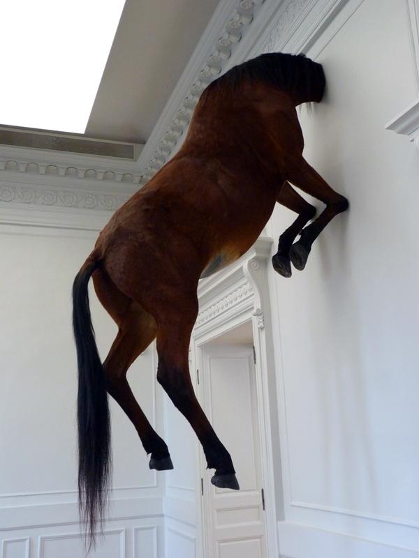p1570687-3-maurizio-cattelan-sans-titre-300x170x80cm-2007-cheval-naturalise