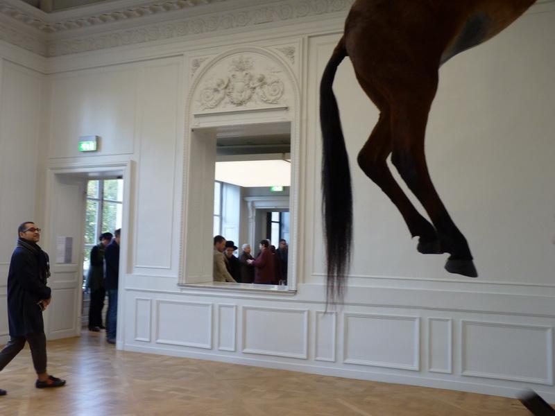 p1570747-3-maurizio-cattelan-sans-titre-300x170x80cm-2007-cheval-naturalise