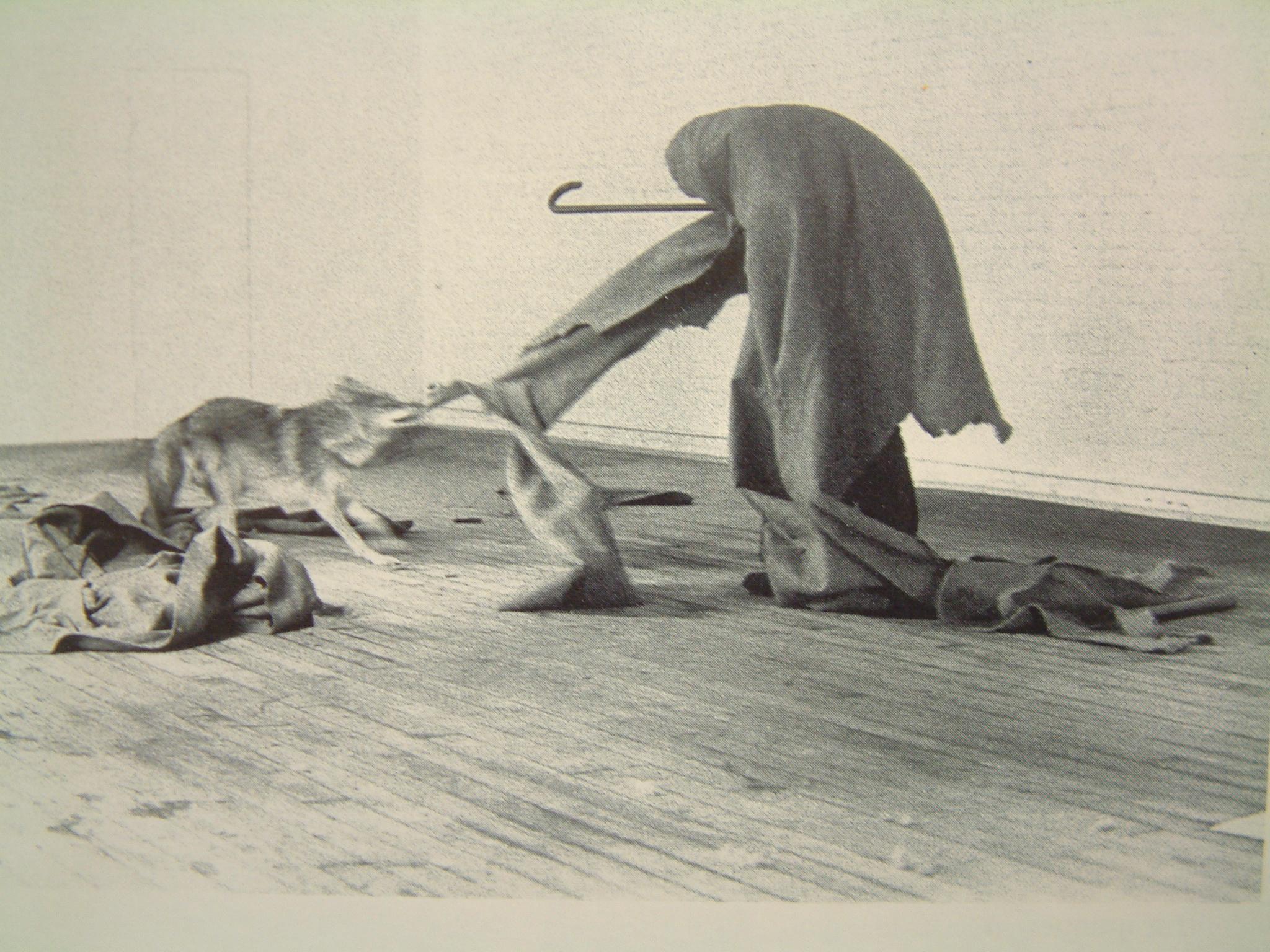 013 Beuys 74 我愛美國. 美國愛我