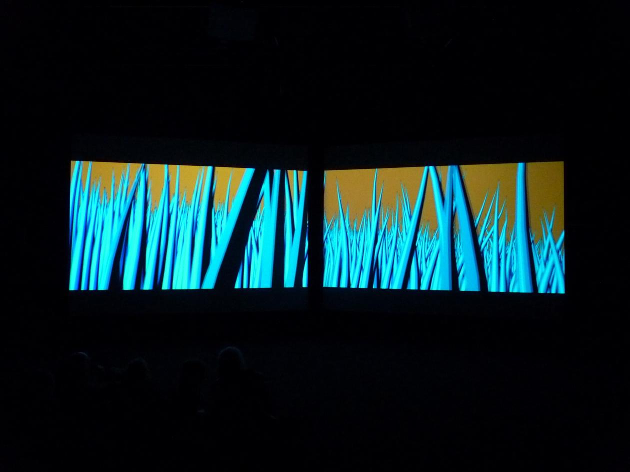 P1610935 Olga Neuwirth ne1968 -Tal Rosner ne1978 disenchanted lsland 2016-17 installation visuelle -sonore video 18 minu