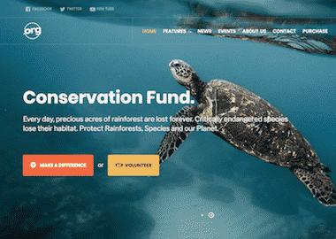 11 exemples de sites construits spécialement pour les associations et ONG