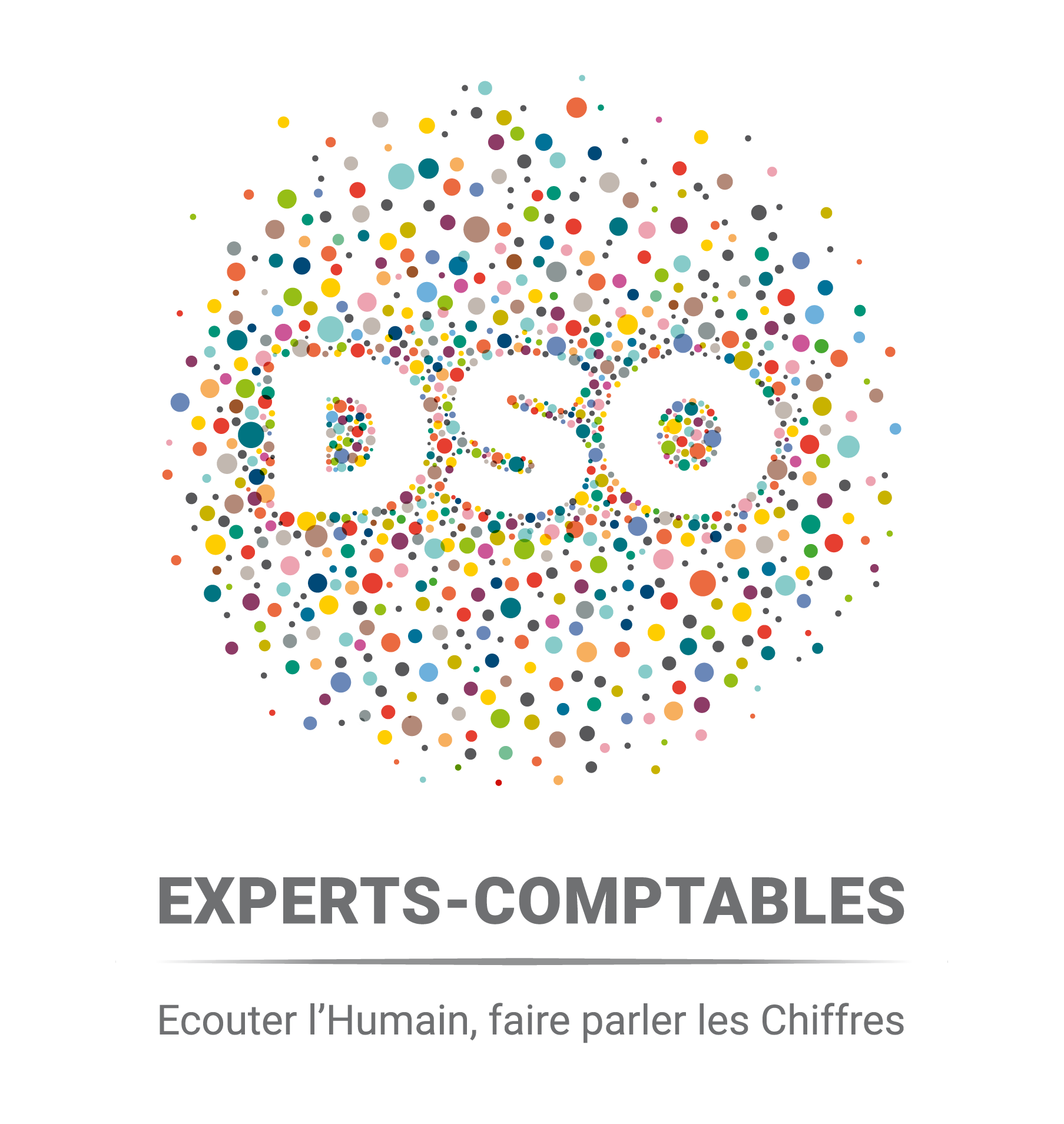 Logo dso mentions rvb