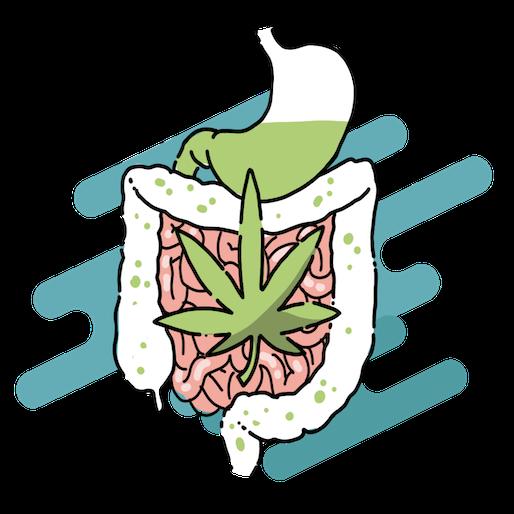 Cannabis e Alimentazione