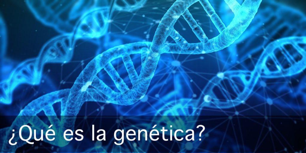 qué es la genética