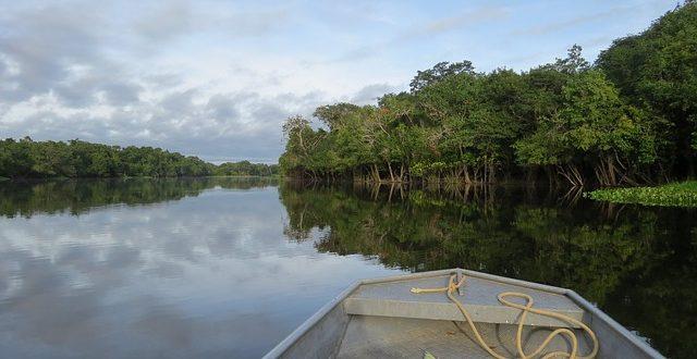 Al Amazonas le cuesta adaptarse al cambio climático