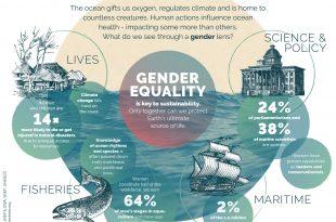 dia mundial oceanos 2019