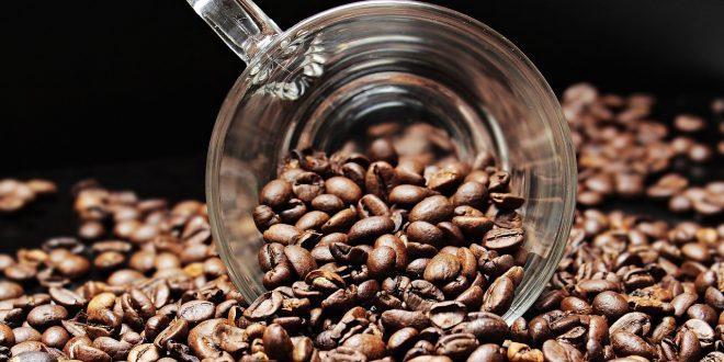 cafeina sueño