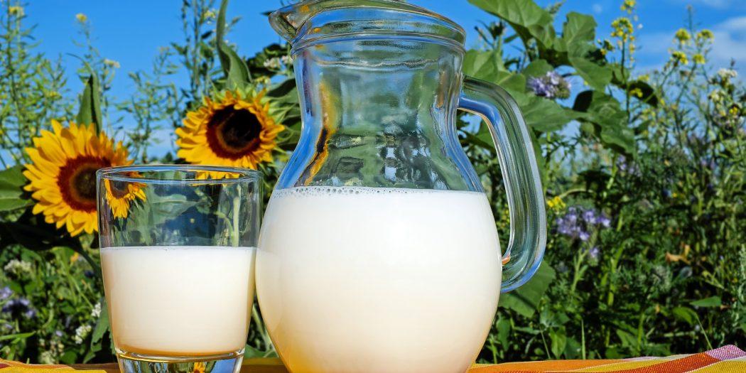 por que intolerancia lactosa