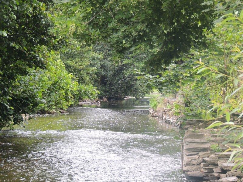 La Semois au moulin de Navaux, à Thilay (08) - 2