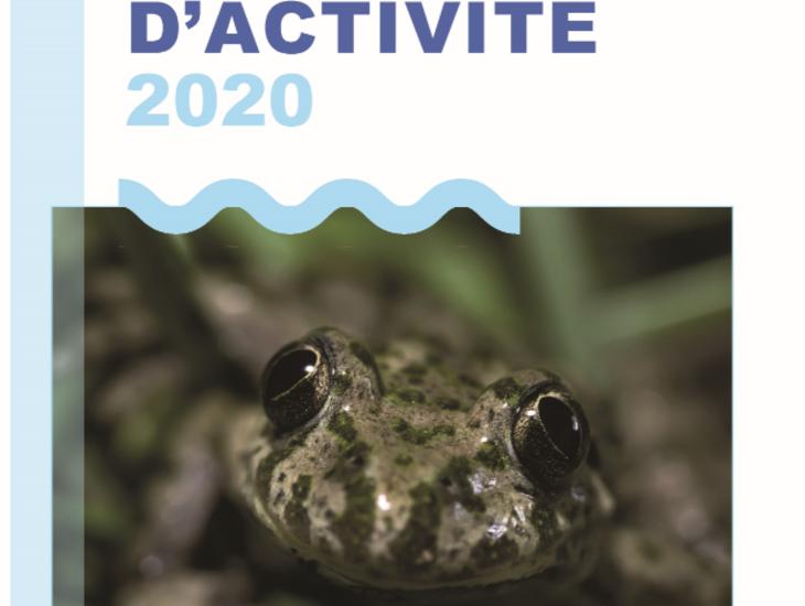 couverture_rapport_activites_2020