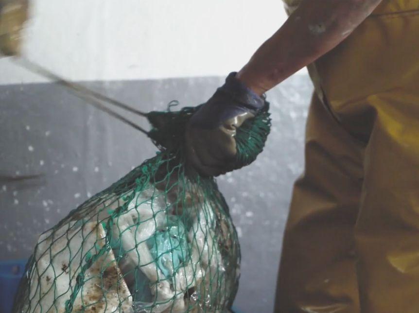 Recycler le plastique