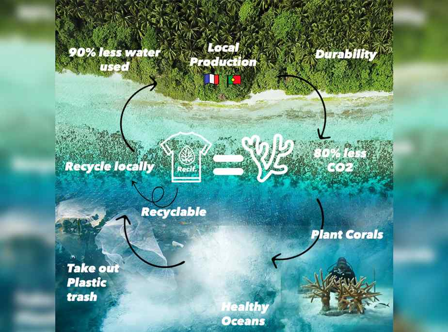 Recif plante des coraux