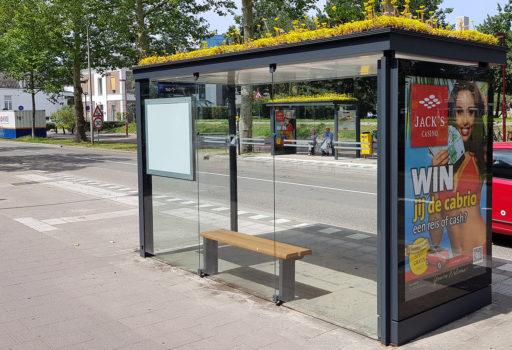Aux Pays-Bas, la ville d'Utrecht fait fleurir les abribus pour sauver les abeilles