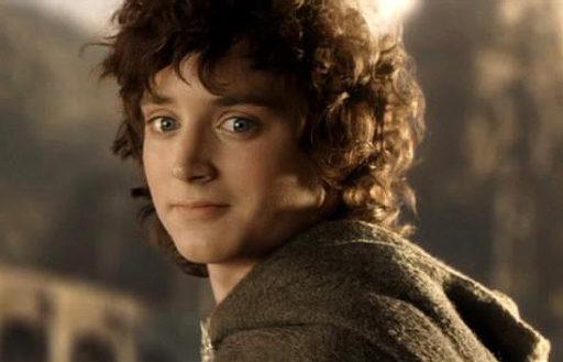 """Cet insecte de Nouvelle-Zélande a été baptisé Frodo en hommage au """"Seigneur des Anneaux"""""""