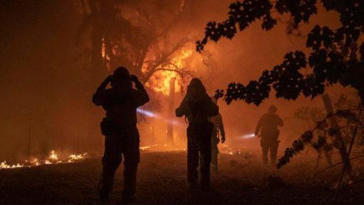 """Plus de 11 000 scientifiques à travers le monde déclarent l'""""urgence climatique"""""""