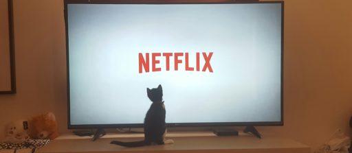 Netflix: les 20 séries les plus attendues de 2020