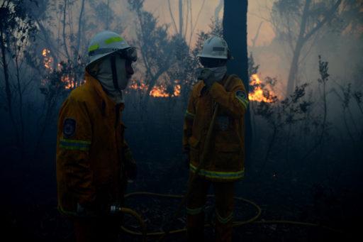 Australie: les incendies ont rasé 20% des forêts du pays