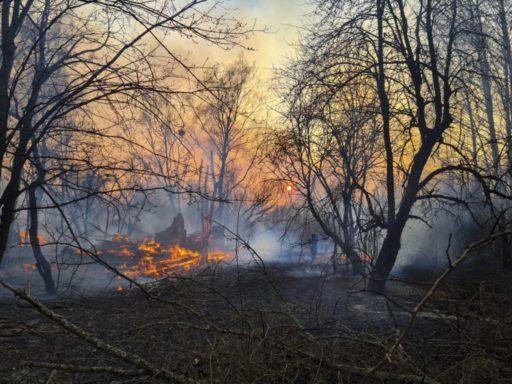 Tchernobyl: un énorme feu de forêt fait exploser le compteur Geiger