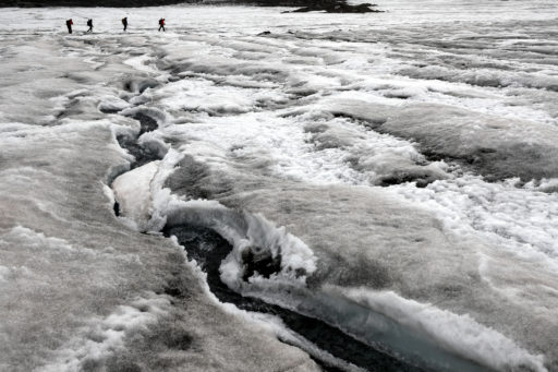 Des algues commencent à recouvrir la glace en Antarctique et ce n'est pas bon signe