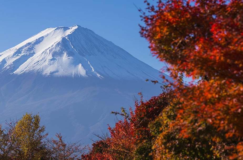 Che Stagione è in Giappone Adesso rispetto all'Italia? Guida al Clima
