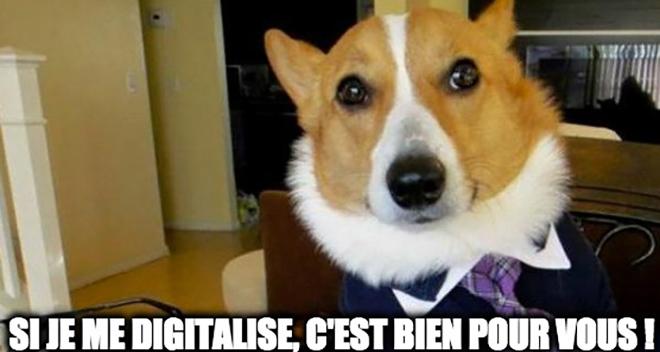 digitalisation droit