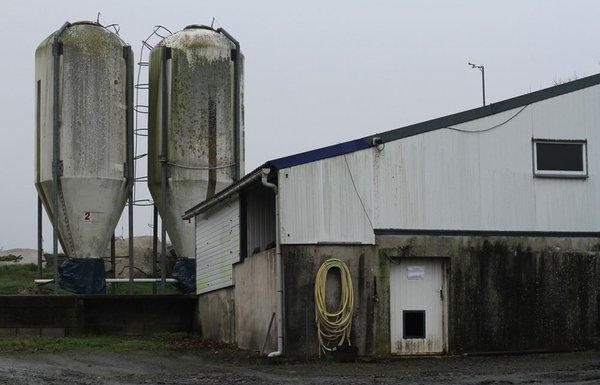 Inès Léraud journal Breton ferme et silo