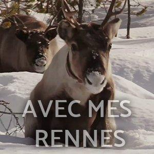jon face aux vents corto fajal avec mes rennes