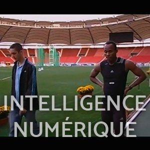 intelligence numérique l'homme aux chiffres