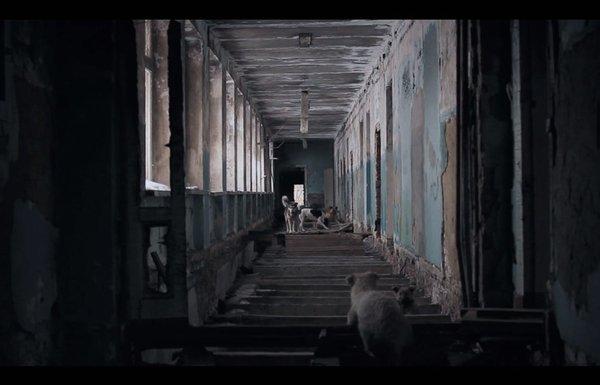 chien l'archipel des âmes en peine