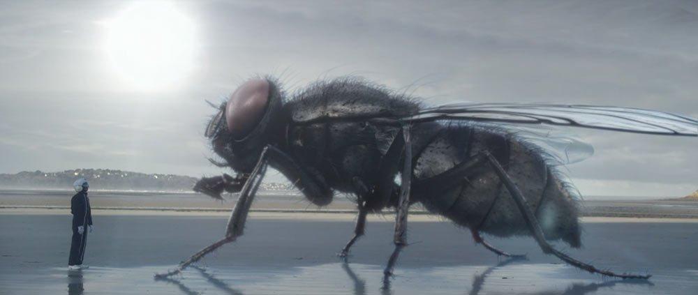 la mouche cascadeur