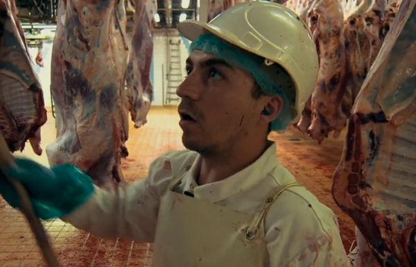 Marquage des viandes - Avec le sang des hommes