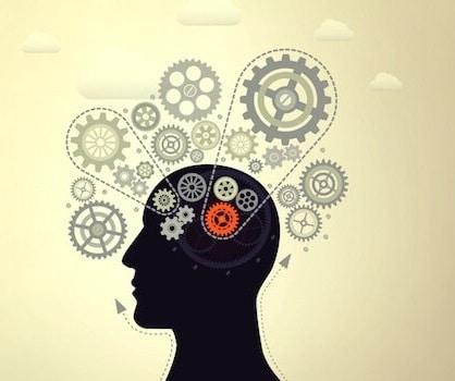 mécanismes intelligence