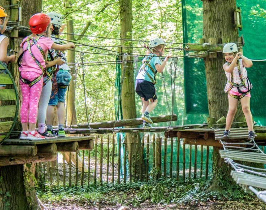 Sortie scolaire : parc aventure