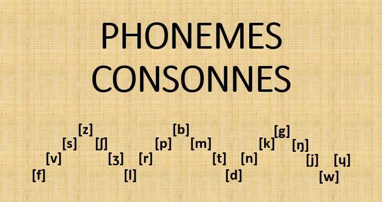 Les phonèmes consonnes