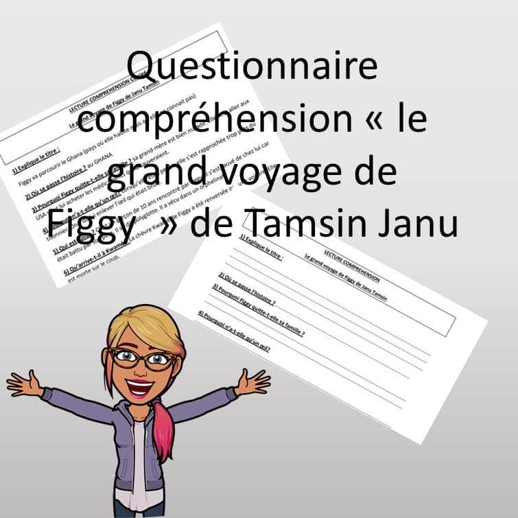 questionnaire de lecture «le grand voyage de Figgy» de Tamsin Janu
