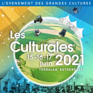 logo culturales