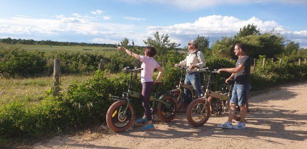 safari vélo électrique