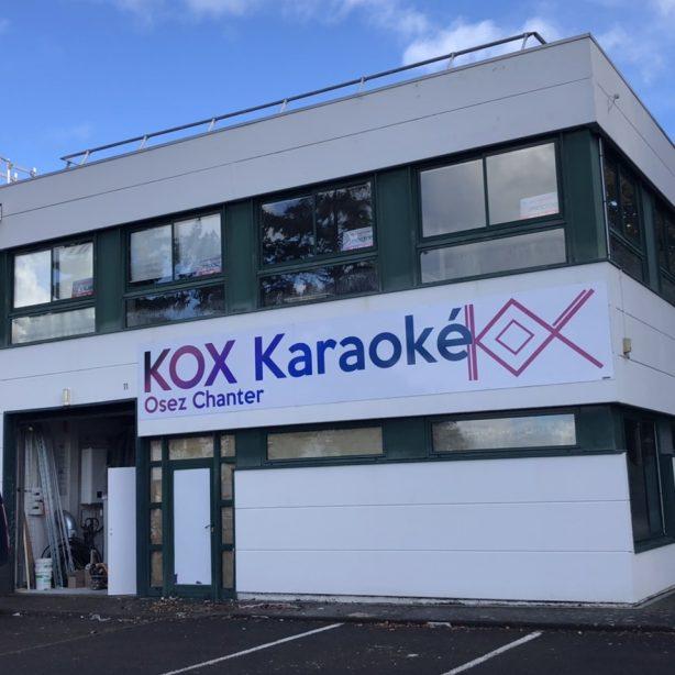 Karaoké en salles privées