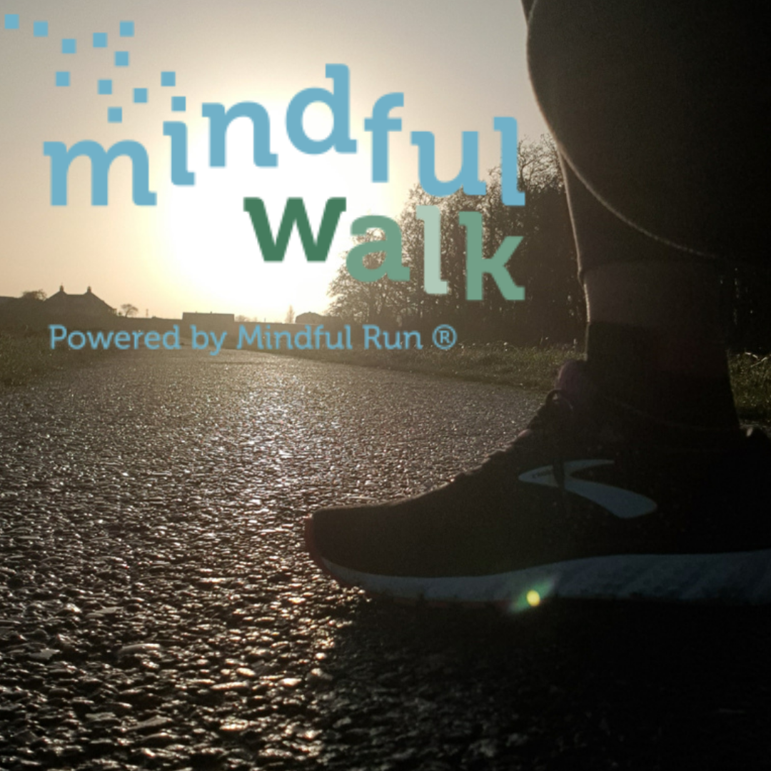cursus mindful walk