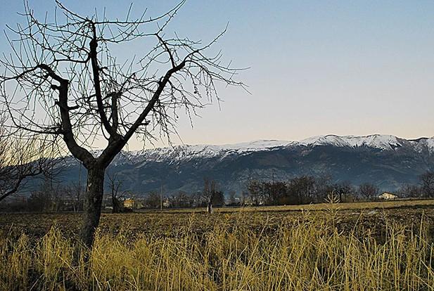 Paesaggio della contrada contadina in cui sono cresciuto, con il Monte Morrone innevato sullo sfondo