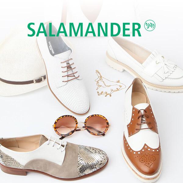Salamander : ouverture !