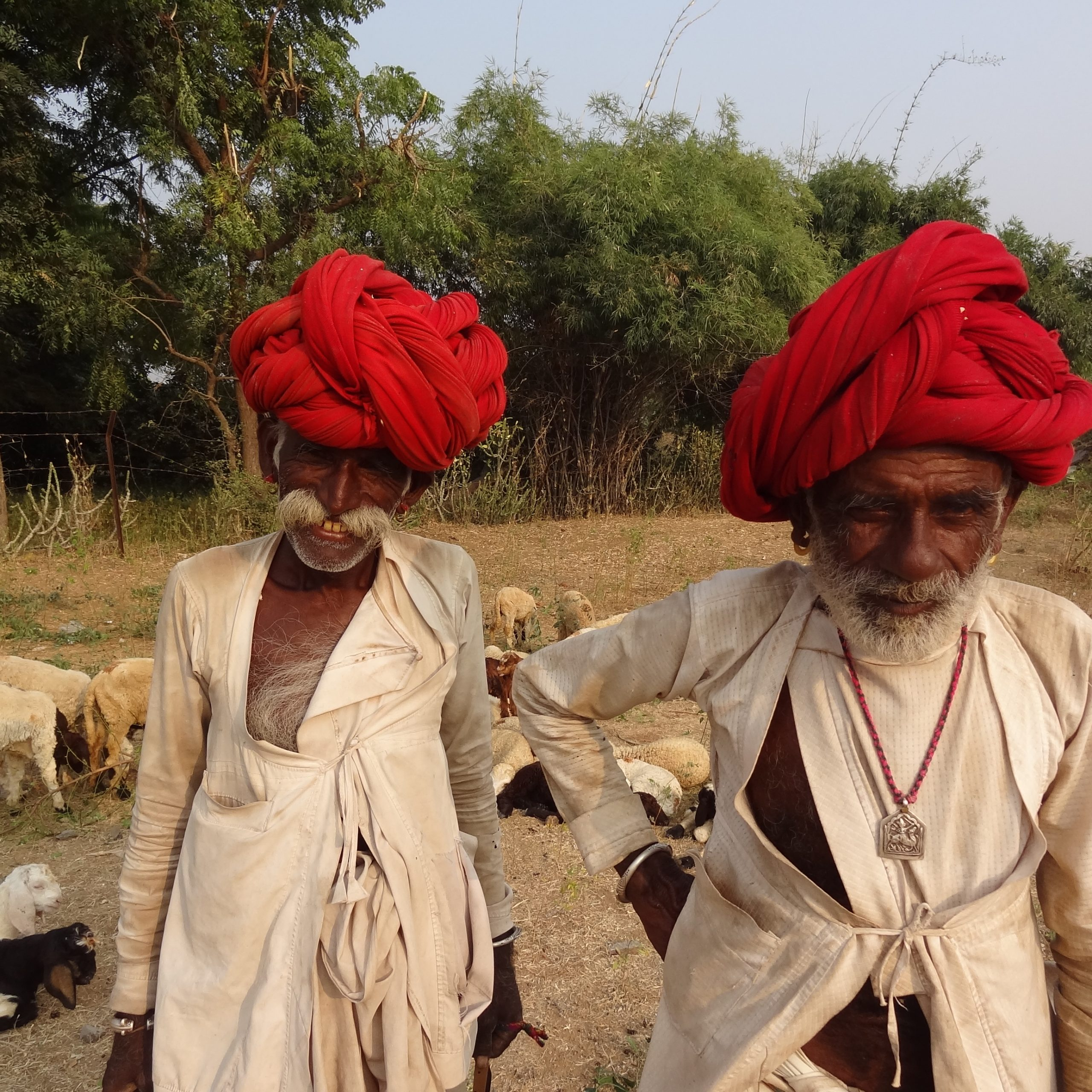 Jour 6 : Dasada – Bhuj (280Km/5h30)