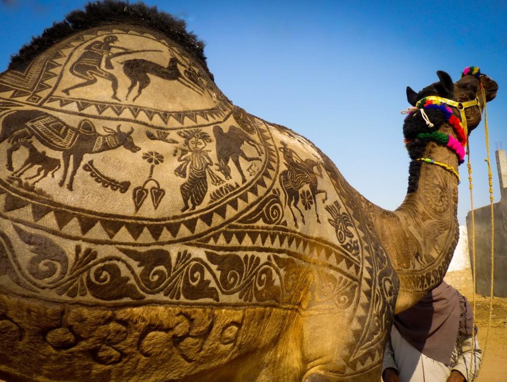Jour 4 : Jodhpur - Pushkar (210 KM)