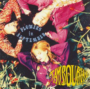05_08_1989_tambourine