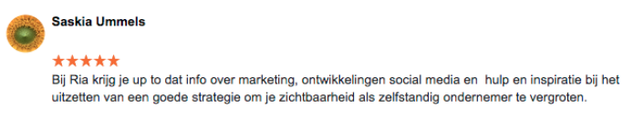 Review Online Marketing Succes Saskia