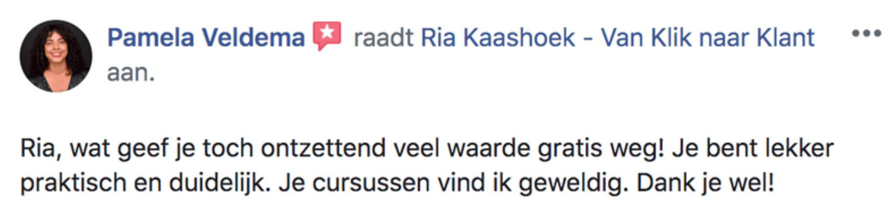 Pamela Veldema - ervaring Van Klik naar Klant